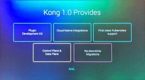 Kong1_0_Provides